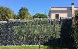 villa-via-appia-nuova-(3)
